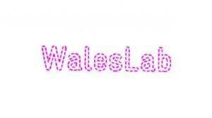 art001-waleslab-714px-jp